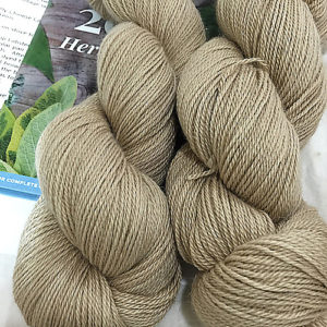http://www.ravelry.com/yarns/library/elliebelly-elliebelly-angel-fingering-yarn